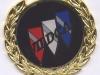 wildcat-emblem